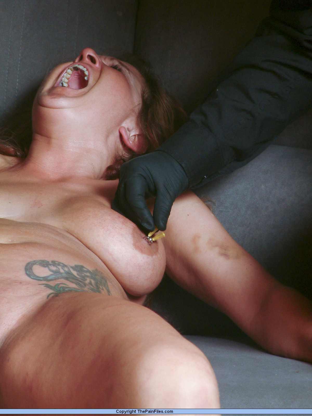 Big fat tits boobs ass booty